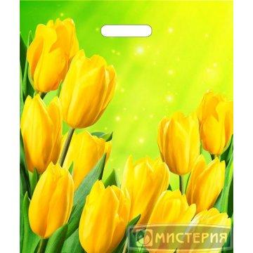 Пакет (мешок) проруб. ПВД 45х38см, 60мкм, Солнечные тюльпаны 50 шт/уп 500 шт/кор