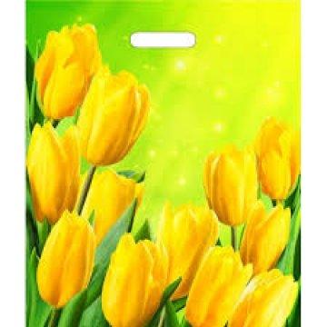 Мешки (пакеты) с вырубной усил. ручкой 38х45+6 (60) Тико глянец Солнечные тюльпаны (0,050/0,500)