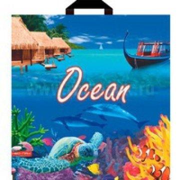 Пакет (мешок) петля ПВД 44х44см, 60мкм, Океан лам. 25 шт/уп 500 шт/кор