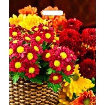 38х45+6 (60) Мешки (пакеты) с вырубной усил. ручкой Тико глянец Бордовые цветы (0,050/0,500)