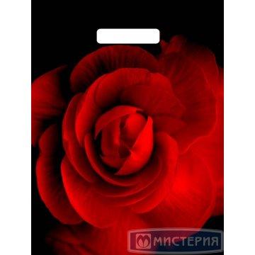 Пакет (мешок) проруб. лам. ПВД 40х31см, 60мкм, Роза на черном 50шт/кор 500  шт/кор