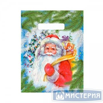 Пакет (мешок) проруб ПВД 30х20см, 30мкм Ждите подарки 100 шт /уп 3 000 шт /кор