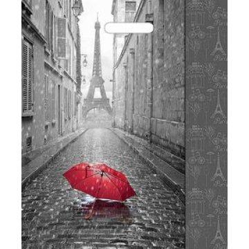 Пакет проруб. 38х45см, ПВД, Мой Париж ламинированный , 60мкм 50 шт./уп. 500 шт./кор
